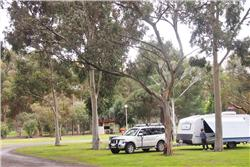Riverton_SA_Riverton_Caravan_Park